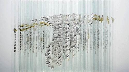 旋转玻璃雕塑惊现四种动物画像