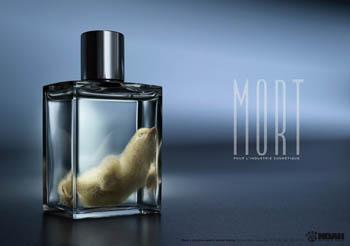 上海网页设计-noah动物协会宣传创意广告欣赏