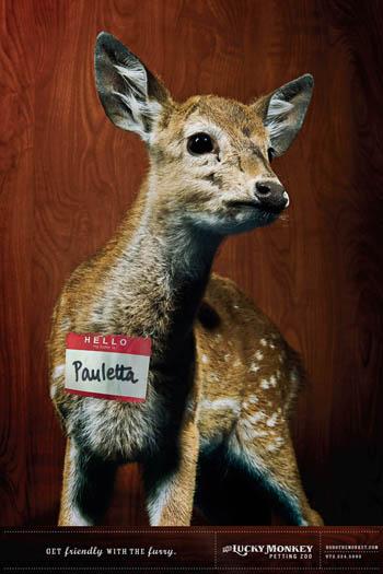 上海包装设计-国外爱畜动物园宣传广告设计